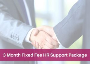 3 Month Fixed Fee HR Support Package